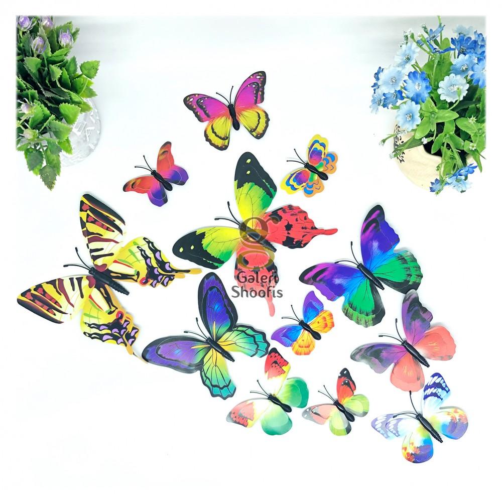 Kupu Kupu Rainbow 3D Tempel